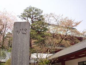P5050057